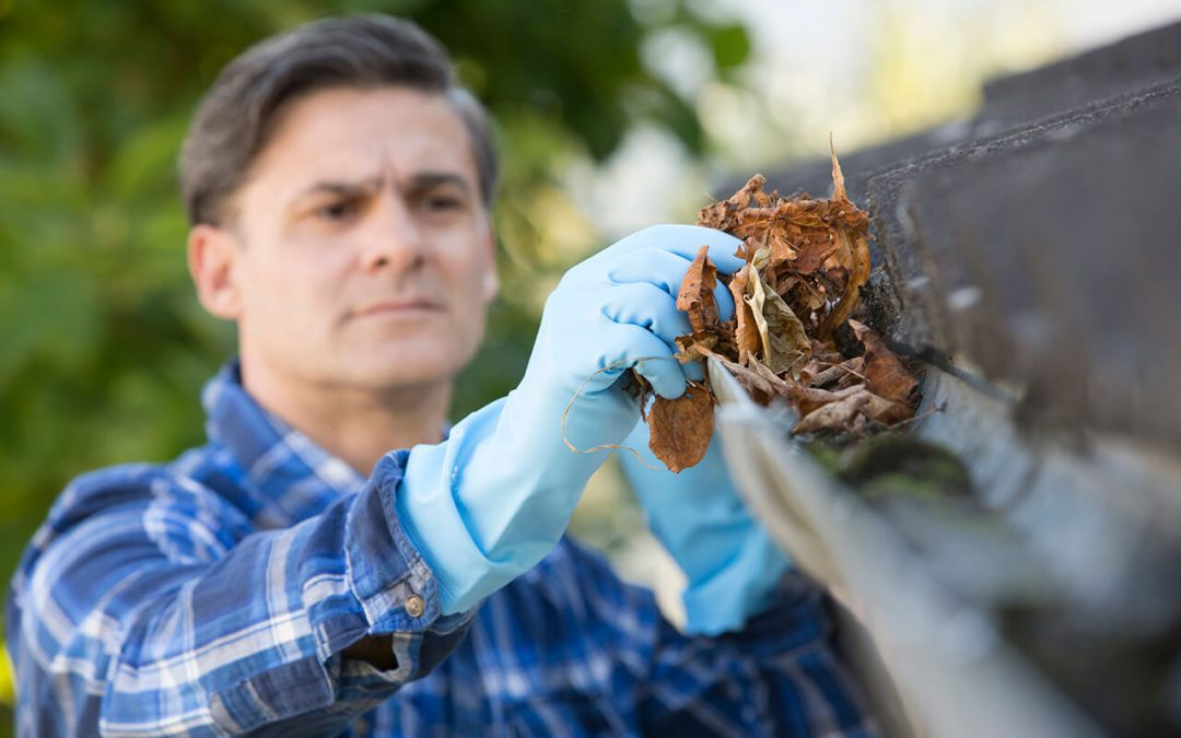 Plan for Fall Home Maintenance